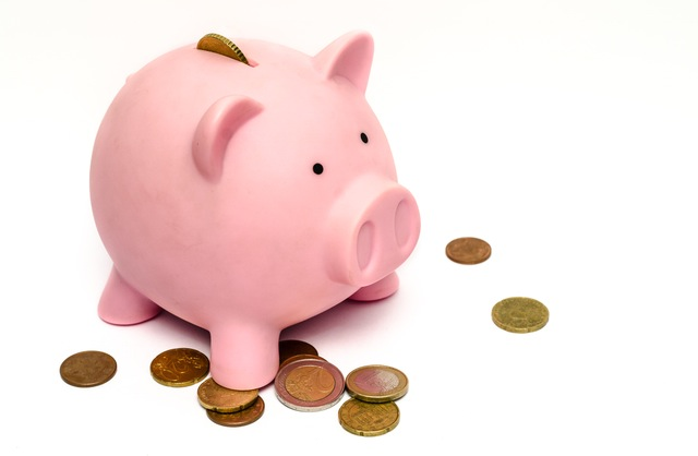 business-money-pink-coins (2)